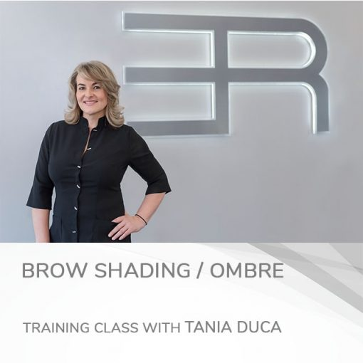 brow shading / ombre training course